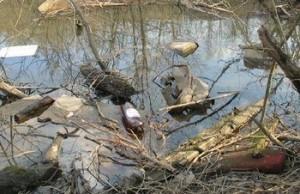 очистка реки