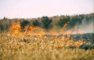 пожар калмыкия